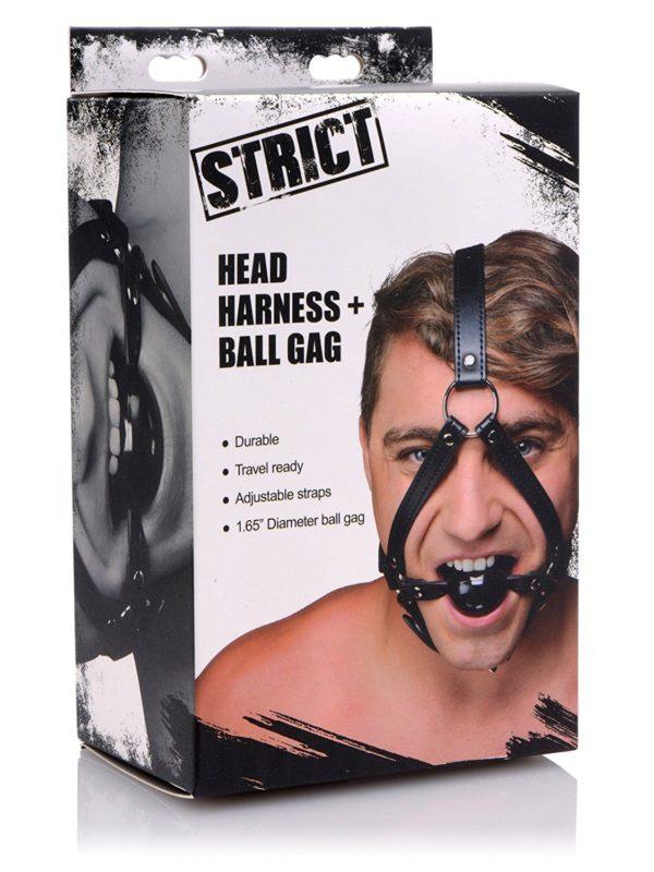 Head harness and ball gag